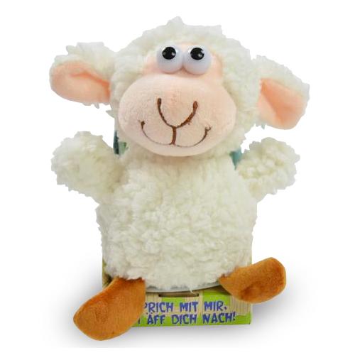 Laber-Zottel-Schaf
